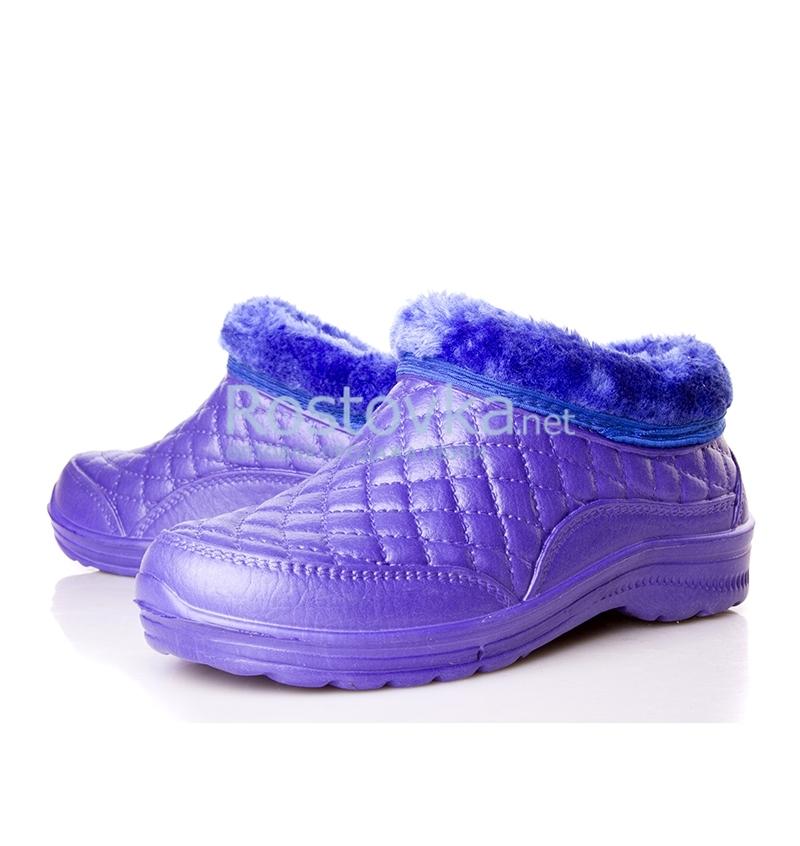 b03-purple E.G
